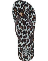 Tory Burch Multicolor Thin Printed Flip Flop Leopard