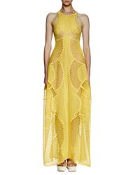 Stella McCartney Yellow Valerie Mesh-embroidered Gown