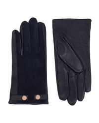 Ted Baker - Blue Suede Stud Detail Gloves - Lyst