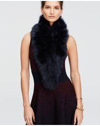 Ann Taylor Blue Faux Fur Scarf