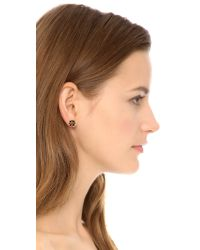 Tory Burch Black Logo Flower Resin Stud Earrings - Tortoise/Shiny Gold