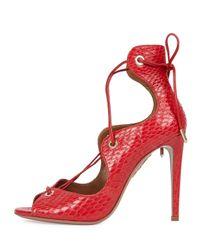Aquazzura - Red Tango Elaphe Snakeskin Lace-Up Sandals  - Lyst