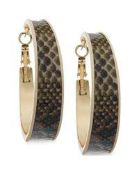 Guess - Metallic Goldtone Python Print Hoop Earrings - Lyst