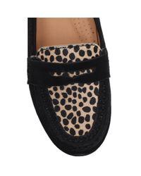 Carvela Kurt Geiger Black Cali Suede Flat Loafers