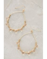 Anthropologie | Pink Rosewater Hoops | Lyst