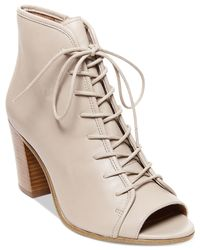 Steve Madden | Brown Neela Lace-up Booties | Lyst
