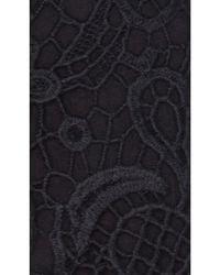 Velvet By Graham & Spencer | Black 'audrey' Lace Sheath Dress | Lyst