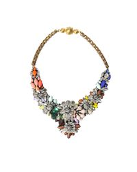 Shourouk - Brown Apolonia Fox Necklace - Lyst