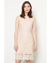 Warehouse Natural Lace Detail Shift Dress