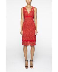 Nicole Miller Red Lace V Neck Dress