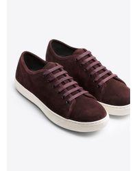 Vince Purple Austin Sport Suede Leather Sneaker for men