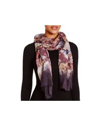 Echo Black Rose Bed Ombre Scarf