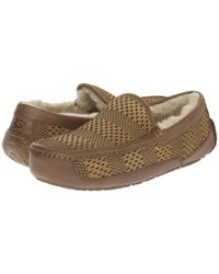 Ugg - Brown Ascot Weave - Lyst