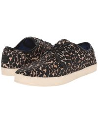 TOMS - Multicolor Paseo for Men - Lyst