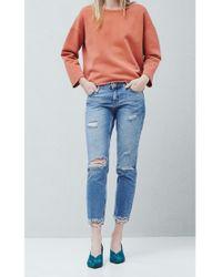 Mango Blue Straight Fit Joe Jeans