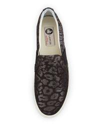 Lanvin Metallic Shimmer Leopard-print Skate Shoe