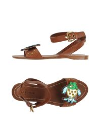 Car Shoe Brown Sandals