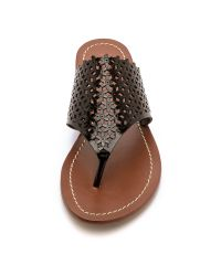 Tory Burch Daisy Perforated Flat Thong Sandals - Black