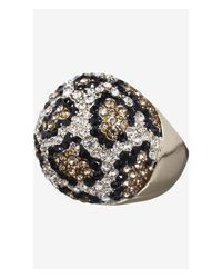 Express Metallic Pave Leopard Dome Ring