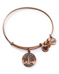 ALEX AND ANI - Pink Tree Of Life Rose Gold Tone Wire Bangle - 100% Bloomingdale's Exclusive - Lyst