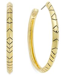 House of Harlow 1960 | Metallic Gold-tone C Hoop Earrings | Lyst