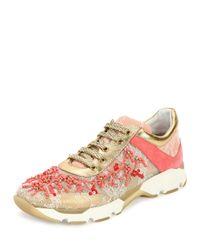 Rene Caovilla - Pink Beaded Lace & Leather Sneaker - Lyst
