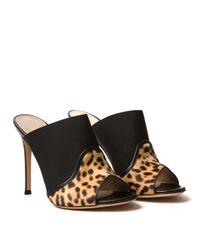 Gianvito Rossi - Multicolor Leopard Mules - Lyst