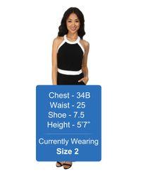 Calvin Klein - Black Halter Color Blocked Jumpsuits - Lyst