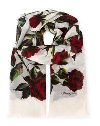Dolce & Gabbana   White Rose Print Scarf   Lyst