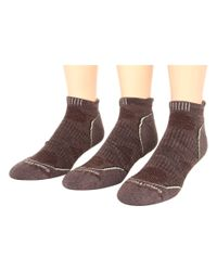 Smartwool - Brown Phd Outdoor Light Micro 3-pack for Men - Lyst
