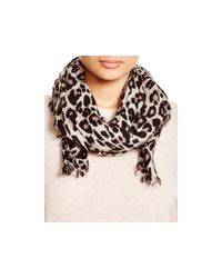 kate spade new york | Multicolor Cheetah-print Oblong Scarf | Lyst