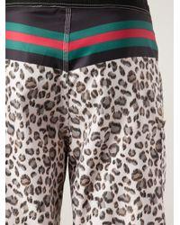 Stussy Multicolor Rich Cat Swim Shorts for men