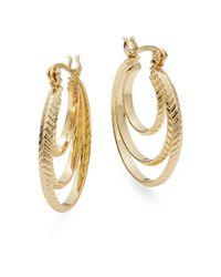 Ak Anne Klein Metallic Multi-row Hoop Earrings
