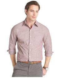Izod Brown Slimfit Microstripe Shirt for men