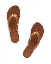 Tory Burch Brown Thora Thong Sandal