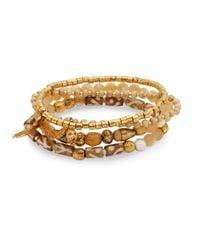 Chan Luu - Metallic Mother-of-pearl Bracelet Set - Lyst