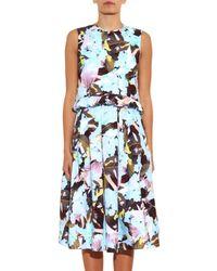 Erdem Blue Muriel Te Pari-Print Cotton Dress