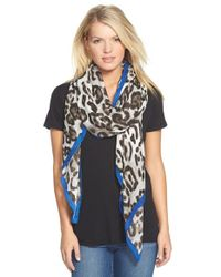 Vince Camuto | Black 'leopard Love' Scarf | Lyst