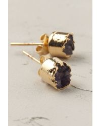 Anthropologie | Purple Crystalline Post Earrings | Lyst