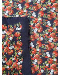 Dolce & Gabbana - Blue Tomato Print Pocket Square for Men - Lyst