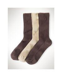 Ralph Lauren - Brown Ribbed Trouser Sock 3-pack - Lyst