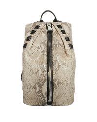 Aimee Kestenberg Gray Tamitha Leather Studded Backpack