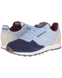 Reebok Blue Classic Leather Int Op for men