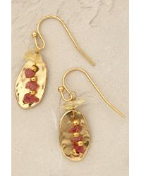 Anthropologie - Pink Amber Trinket Earrings - Lyst