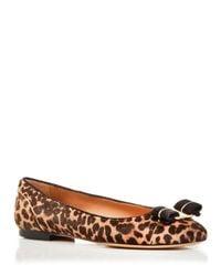Ferragamo - Brown Varina Leopard Print Calf Hair Ballet Flats - Lyst