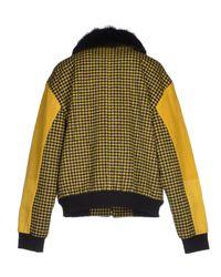 Antipodium Yellow Jacket