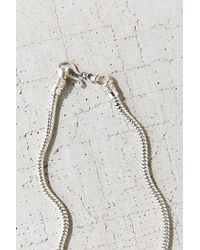 Urban Outfitters - Metallic Snake Chain Choker Necklace - Lyst