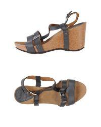 Scholl Gray Sandals