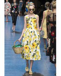 Dolce & Gabbana | Yellow Lemons Print Silk Organza & Satin Dress | Lyst