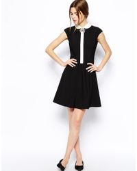 Ted Baker | Black Contrast Collar Dress with Brooch Detail | Lyst